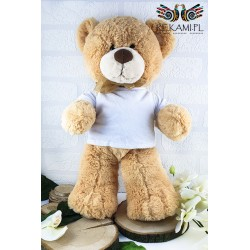 Teddy bear in a T-shirt for printing.
