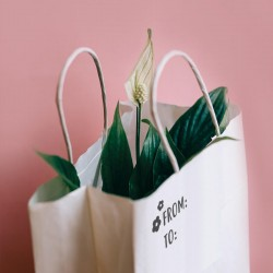 Gift - Paper bag decorated with Little Nio Craft